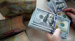 11月13日越盾对美元汇率中间价保持不变