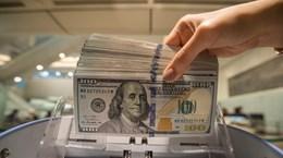 11月8日越盾对美元汇率中间价下降1越盾