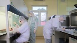 越南新冠肺炎确诊患者增至153例